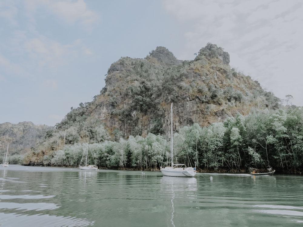 Mangrovenwald in Langkawi