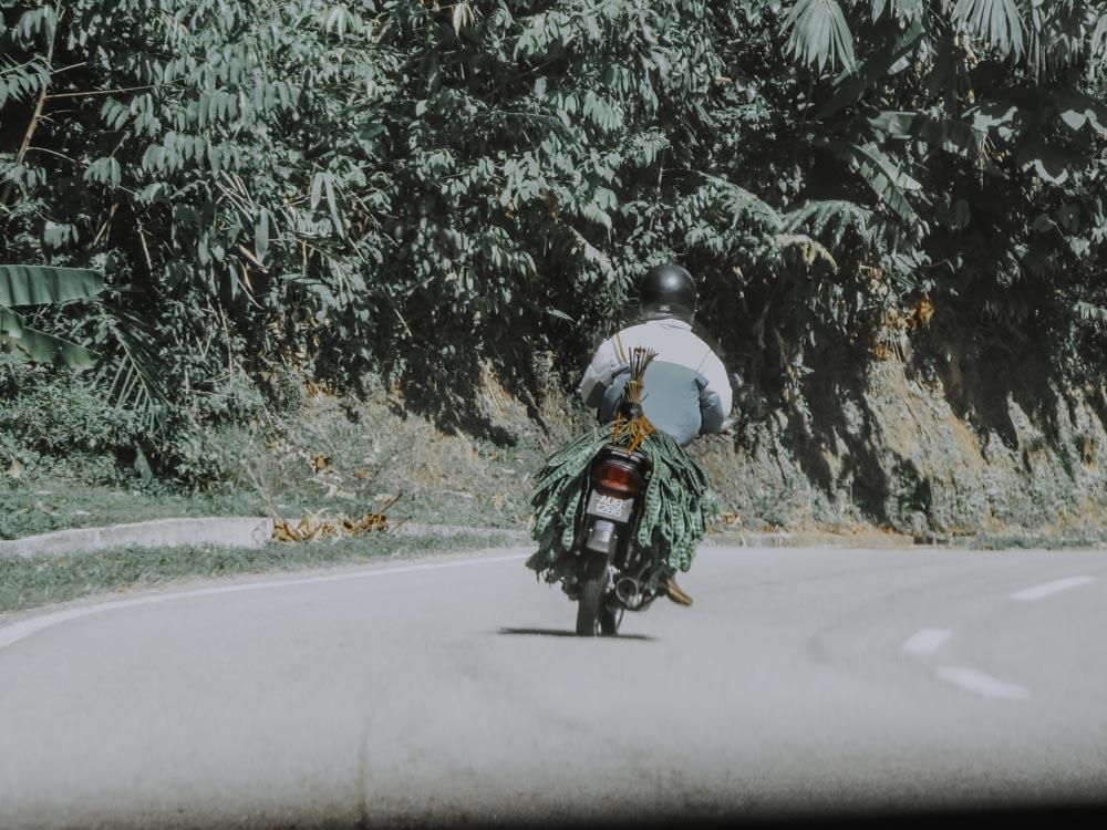 Roadtrip Malaysia
