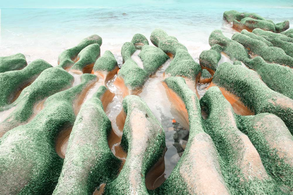 Laomei Green Reef an der taiwanesischen Nordküste