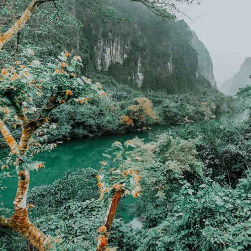 Fluss im Phong Nha-Ke Bang Nationalpark Vietnam
