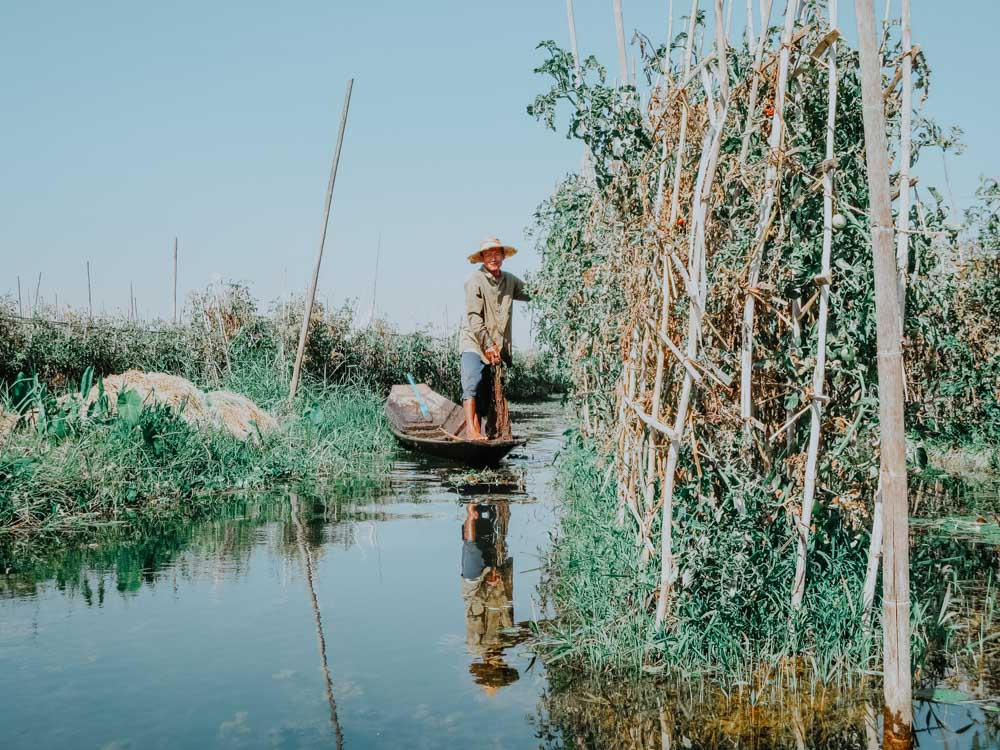 Must sees in Myanmar: Floating Gardens der Intha Inle Lake