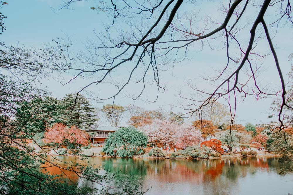See im Shinjuku Gyoen National Park in Tokio