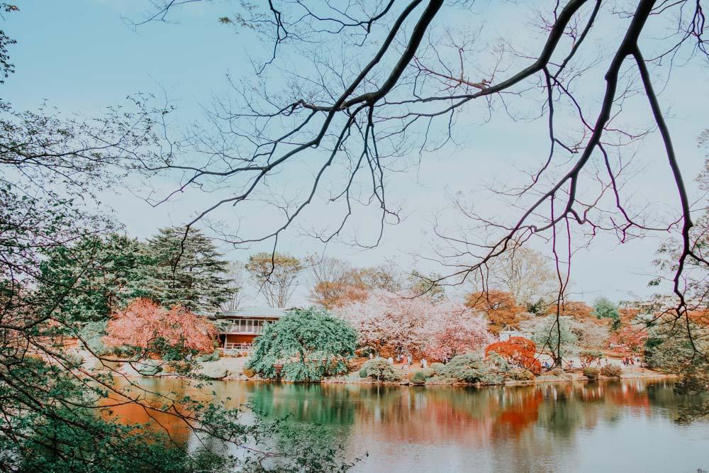 See im Shinjuku Gyoen National Park in Tokio