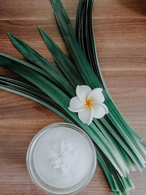 Eingeweichter Reis und Pandanusblätter für den Mango Sticky Rice