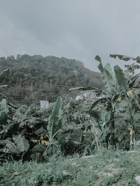 Landschaft in Malaysia