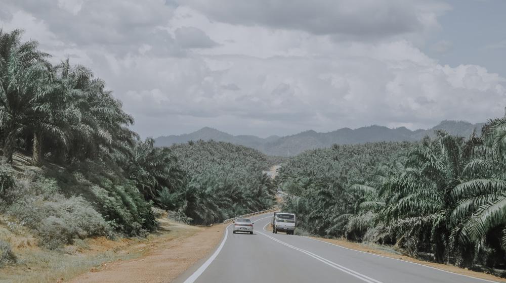 Straße nach Taman Negara in Malaysia