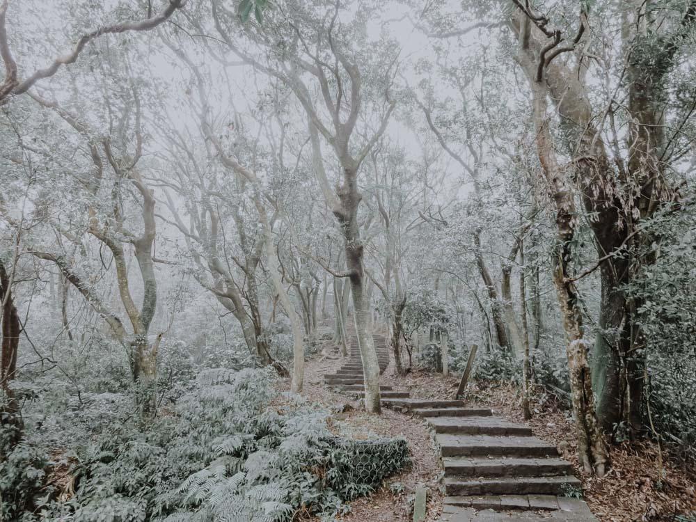 Mount Qixing Trail im Yanmingshan National Park in Taiwan