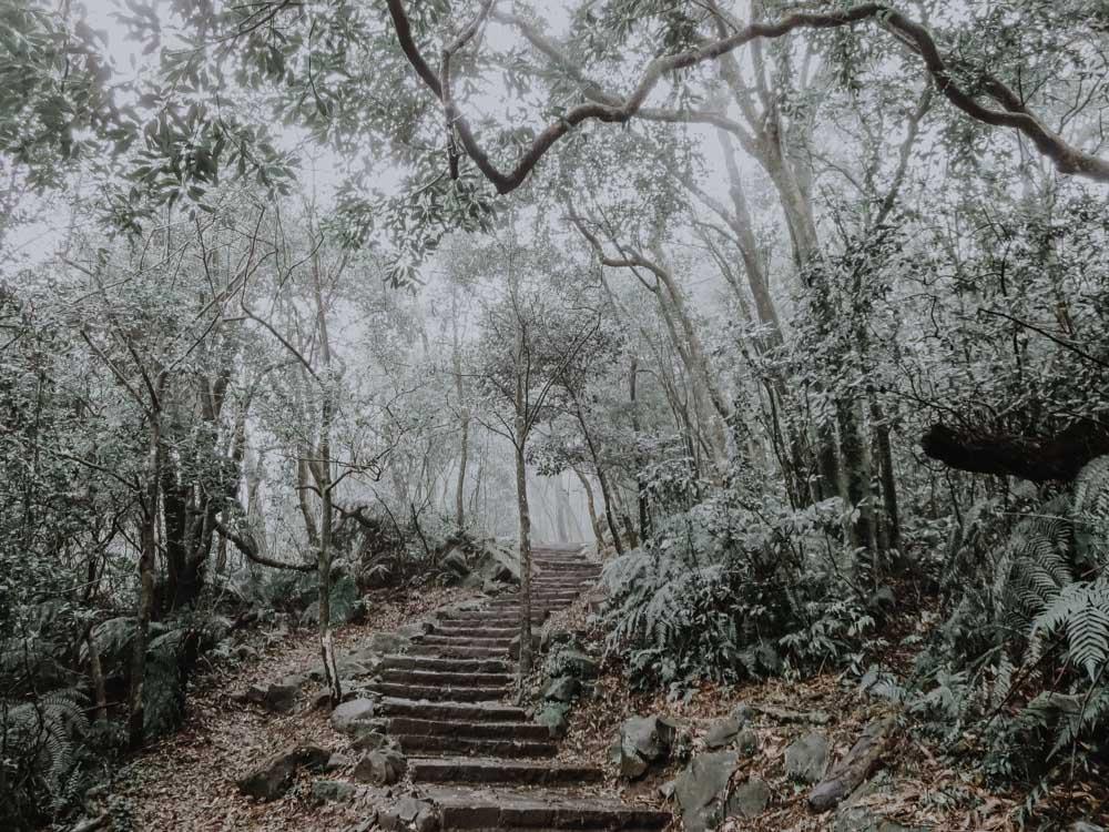 Wanderweg zum Qixingshan im Yangmingshan Nationalpark im Norden von Taiwan