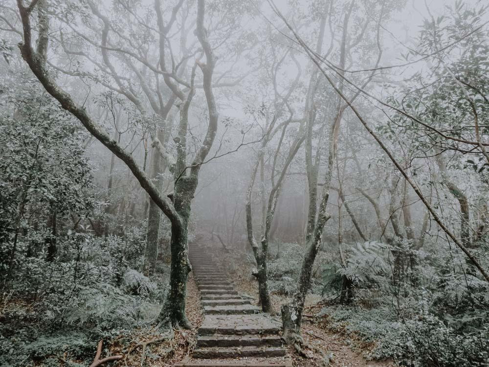 Yangmingshan National Park - Mount Qixing Trail