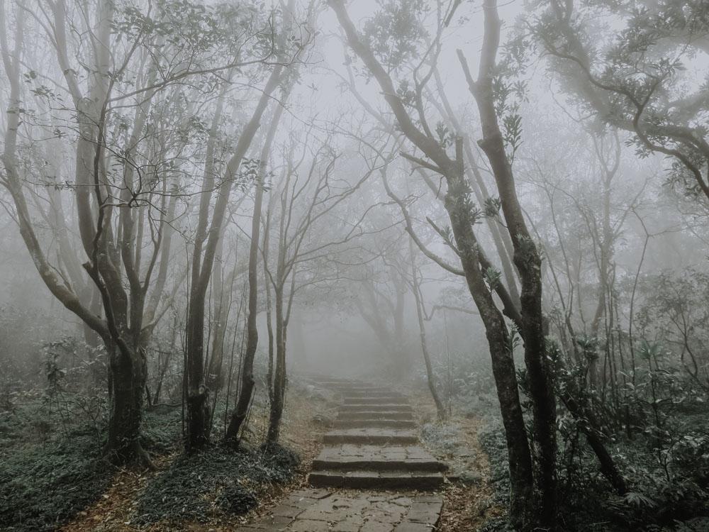 Mount Qixing Trail im Yangmingshan National Park