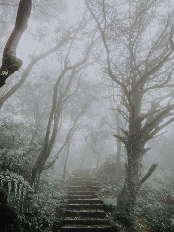 Mount Qixing Trail bei Nebel