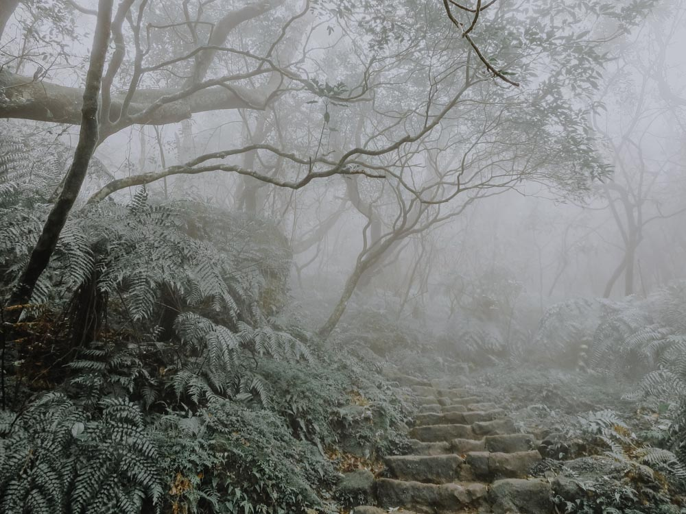Rainy Weather Activities in Taipei - Yangmingshan National Park