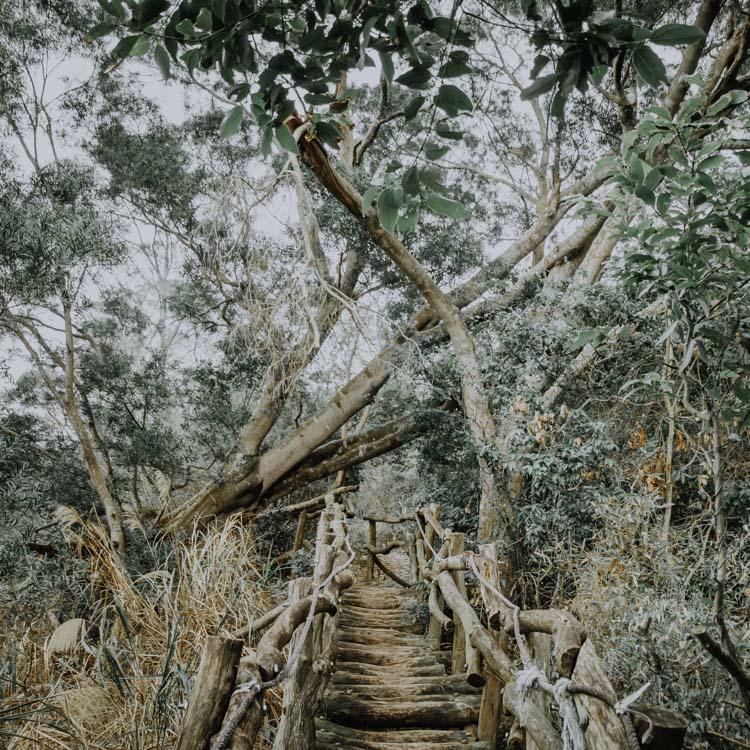 Hiking Trails in Taichung