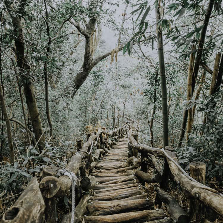Hiking in Taichung