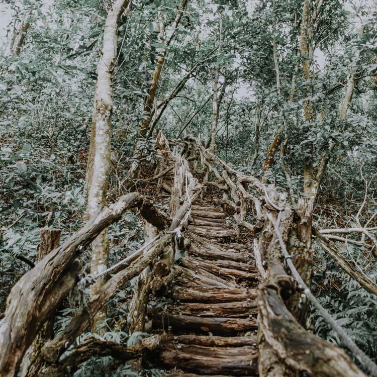 Hiking Trails in der Dakeng Scenic Area
