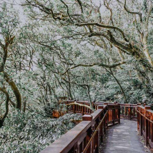 Wandern in Taiwan - Mount Datun