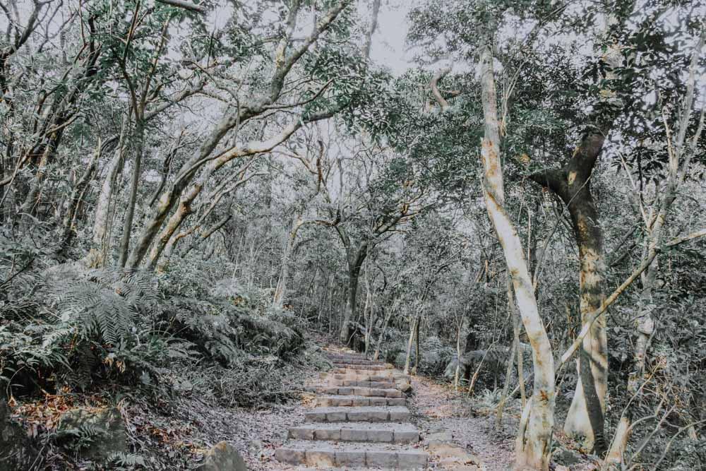 Nationalpark Yangmingshan im Norden von Taipeh