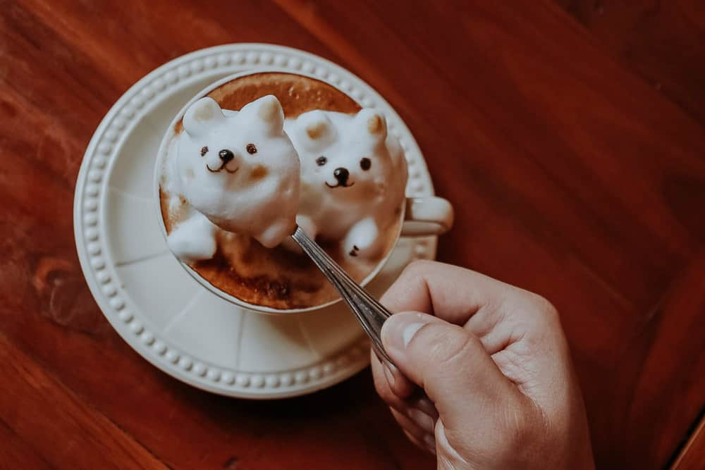 Kaffee vom Bear Hug Cafe mit Latte Art