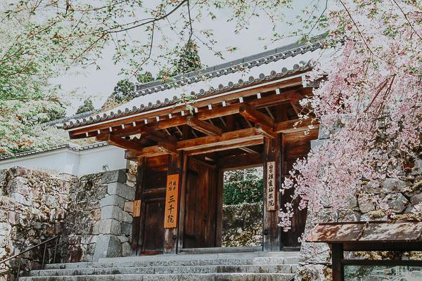Goten-mon Gate des Sanzen-in Tempel
